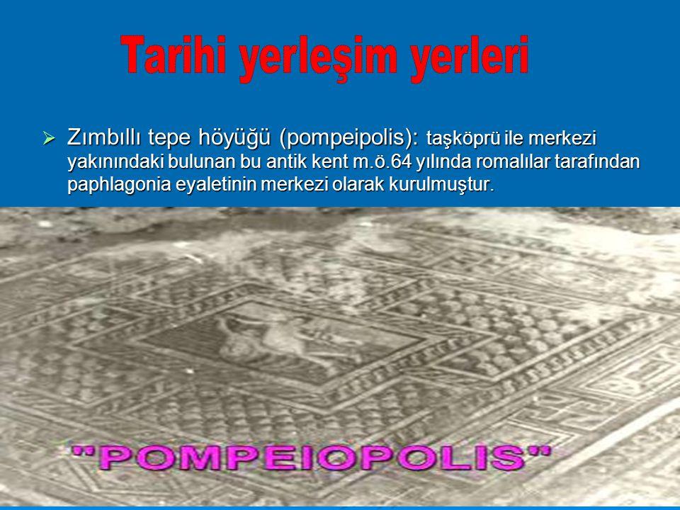  Zımbıllı tepe höyüğü (pompeipolis): taşköprü ile merkezi yakınındaki bulunan bu antik kent m.ö.64 yılında romalılar tarafından paphlagonia eyaletinin merkezi olarak kurulmuştur.