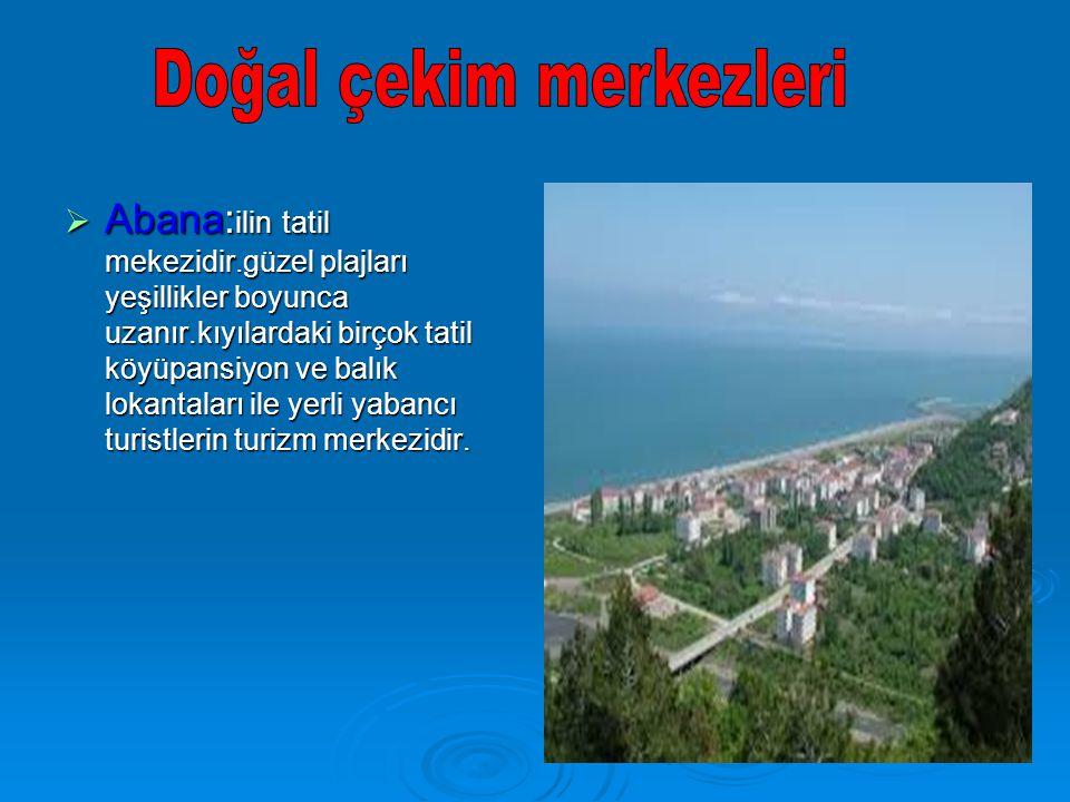  Abana: ilin tatil mekezidir.güzel plajları yeşillikler boyunca uzanır.kıyılardaki birçok tatil köyüpansiyon ve balık lokantaları ile yerli yabancı t