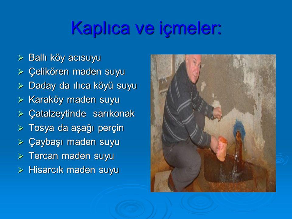 Kaplıca ve içmeler:  Ballı köy acısuyu  Çelikören maden suyu  Daday da ılıca köyü suyu  Karaköy maden suyu  Çatalzeytinde sarıkonak  Tosya da aşağı perçin  Çaybaşı maden suyu  Tercan maden suyu  Hisarcık maden suyu