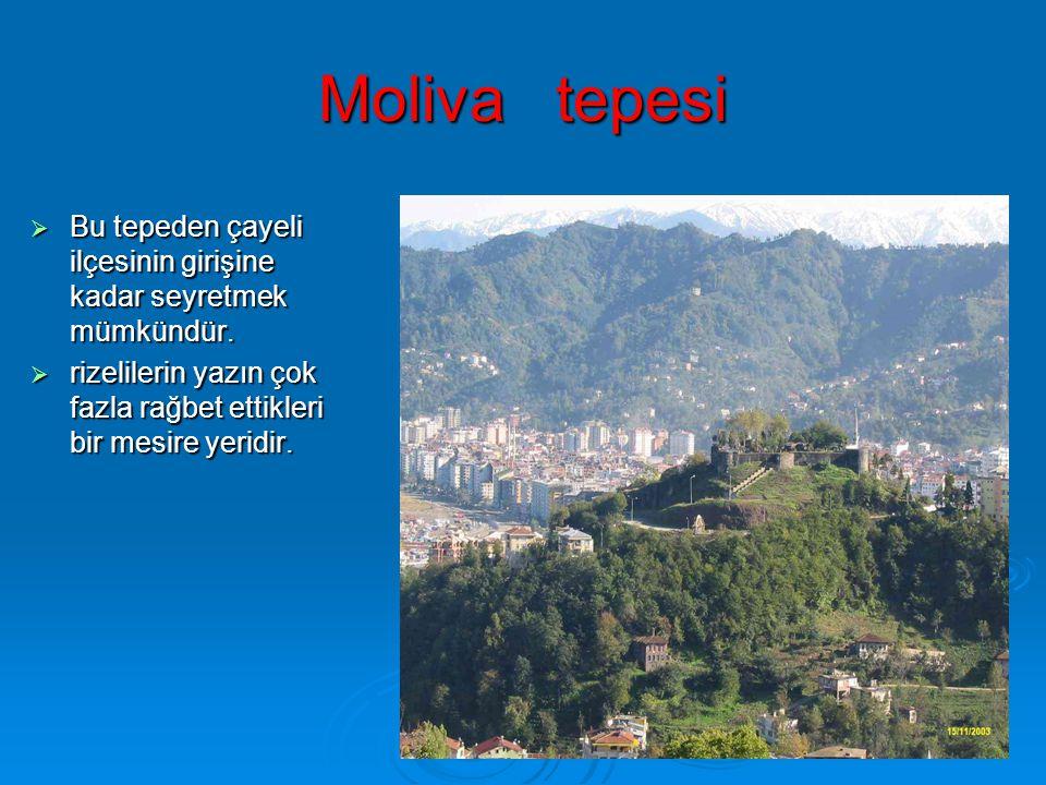 Moliva tepesi  Bu tepeden çayeli ilçesinin girişine kadar seyretmek mümkündür.  rizelilerin yazın çok fazla rağbet ettikleri bir mesire yeridir.