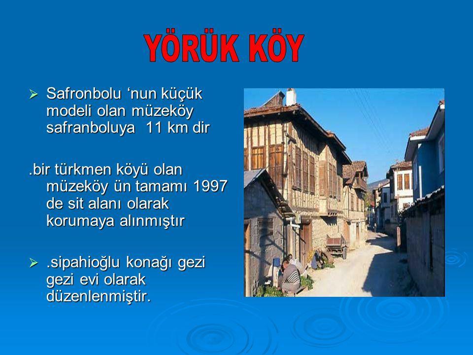  Safronbolu 'nun küçük modeli olan müzeköy safranboluya 11 km dir.bir türkmen köyü olan müzeköy ün tamamı 1997 de sit alanı olarak korumaya alınmıştır .sipahioğlu konağı gezi gezi evi olarak düzenlenmiştir.