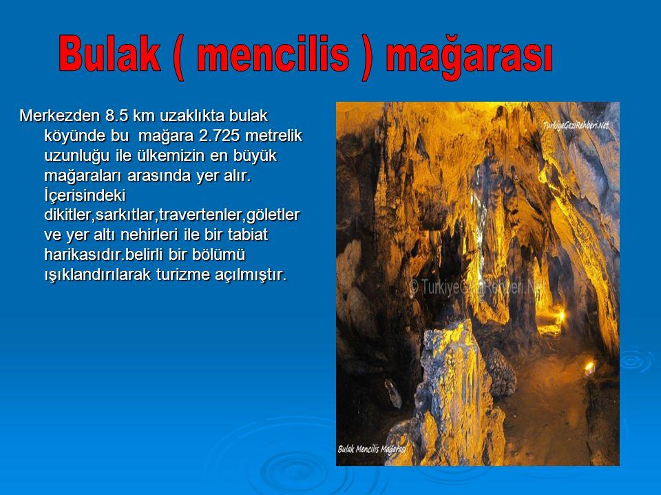 Merkezden 8.5 km uzaklıkta bulak köyünde bu mağara 2.725 metrelik uzunluğu ile ülkemizin en büyük mağaraları arasında yer alır. İçerisindeki dikitler,