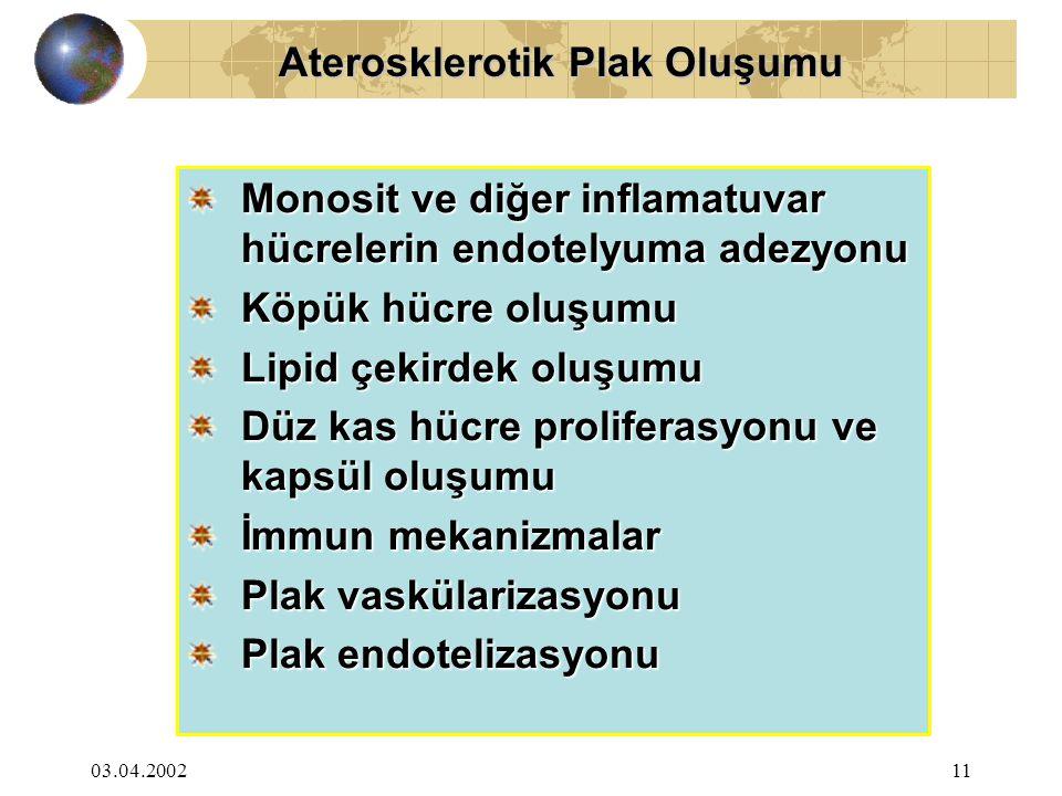 03.04.200211 Aterosklerotik Plak Oluşumu Aterosklerotik Plak Oluşumu Monosit ve diğer inflamatuvar hücrelerin endotelyuma adezyonu Köpük hücre oluşumu Lipid çekirdek oluşumu Düz kas hücre proliferasyonu ve kapsül oluşumu İmmun mekanizmalar Plak vaskülarizasyonu Plak endotelizasyonu