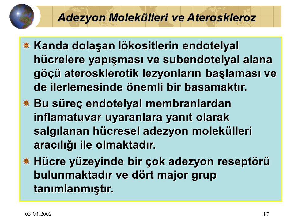 03.04.200217 Kanda dolaşan lökositlerin endotelyal hücrelere yapışması ve subendotelyal alana göçü aterosklerotik lezyonların başlaması ve de ilerlemesinde önemli bir basamaktır.