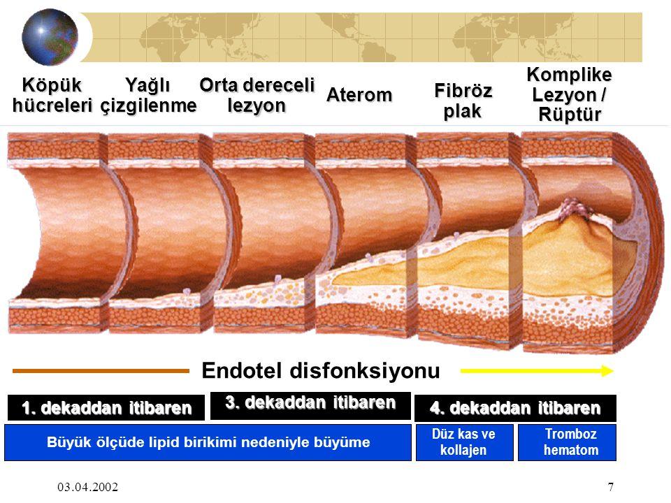 03.04.20027 KöpükhücreleriYağlıçizgilenme Orta dereceli lezyon Aterom Fibrözplak Komplike Lezyon / Rüptür Endotel disfonksiyonu Düz kas ve kollajen 1.