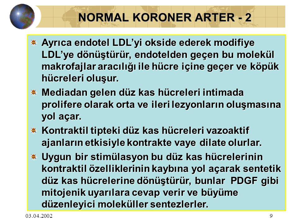 03.04.20029 NORMAL KORONER ARTER - 2 NORMAL KORONER ARTER - 2 Ayrıca endotel LDL'yi okside ederek modifiye LDL'ye dönüştürür, endotelden geçen bu mole