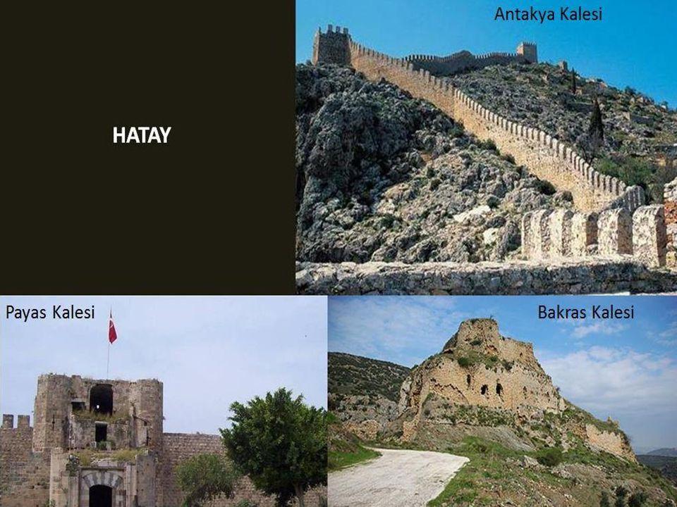 GÜMÜŞHANE Kov Kalesi (ildeki 35 kaleden ayakta kalabilen tek kale)