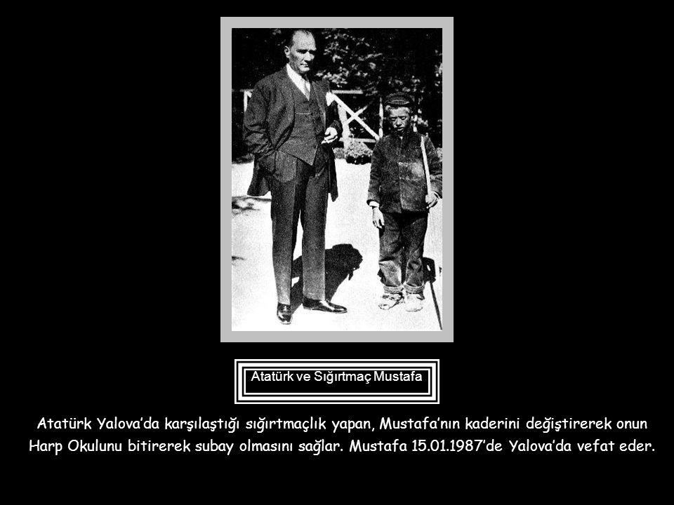 1940-1950 yıllarında ilkokula gidenlerimiz, alfabelerinin kapağında Atatürk'ün en küçük manevi kızı Ülkü'yü hatırlar. Ülkü'nün annesi Vasfiye hanım da