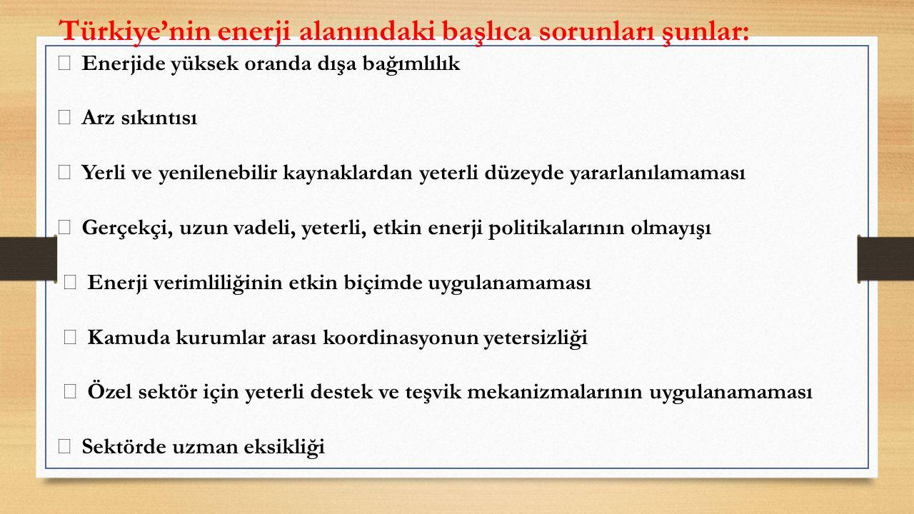 Türkiye'nin enerji alanındaki başlıca sorunları şunlar: Enerjide yüksek oranda dışa bağımlılık Arz sıkıntısı Yerli ve yenilenebilir kaynaklardan yeterli düzeyde yararlanılamaması Gerçekçi, uzun vadeli, yeterli, etkin enerji politikalarının olmayışı Enerji verimliliğinin etkin biçimde uygulanamaması Kamuda kurumlar arası koordinasyonun yetersizliği Özel sektör için yeterli destek ve teşvik mekanizmalarının uygulanamaması Sektörde uzman eksikliği