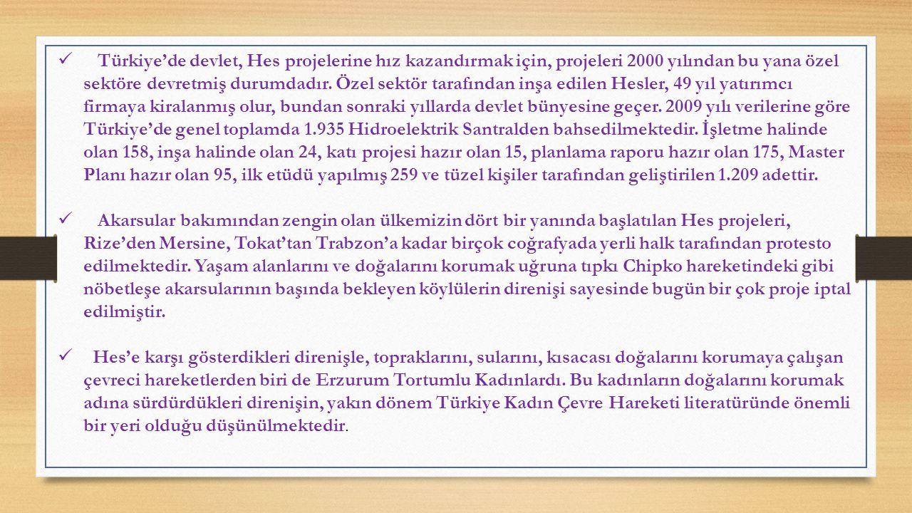 Türkiye'de devlet, Hes projelerine hız kazandırmak için, projeleri 2000 yılından bu yana özel sektöre devretmiş durumdadır.