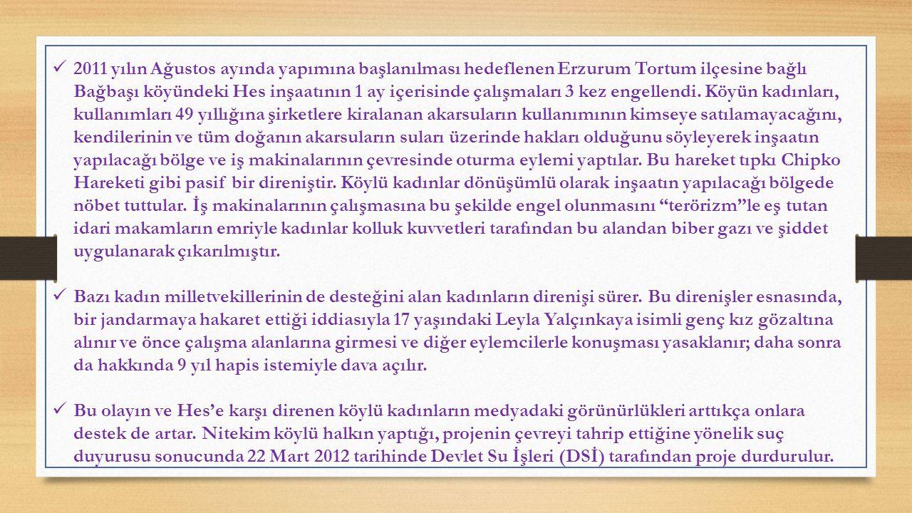 2011 yılın Ağustos ayında yapımına başlanılması hedeflenen Erzurum Tortum ilçesine bağlı Bağbaşı köyündeki Hes inşaatının 1 ay içerisinde çalışmaları 3 kez engellendi.