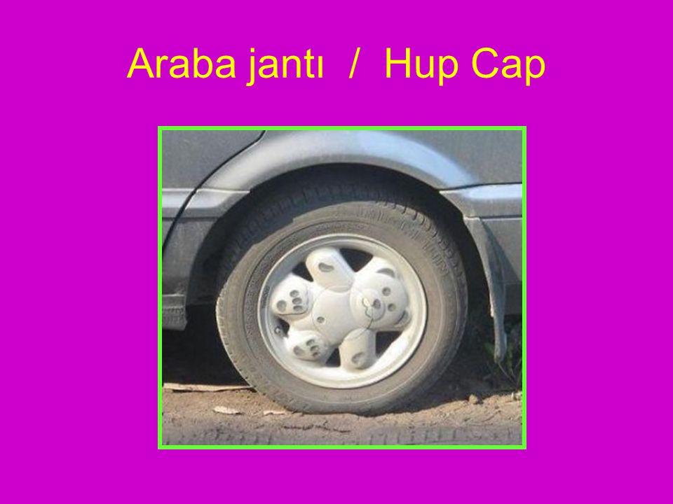 Araba jantı / Hup Cap