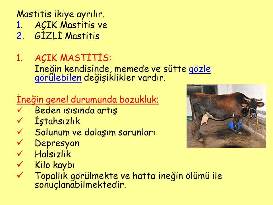 Mastitis ikiye ayrılır. 1.AÇIK Mastitis ve 2.GİZLİ Mastitis 1.AÇIK MASTİTİS: İneğin kendisinde, memede ve sütte gözle görülebilen değişiklikler vardır