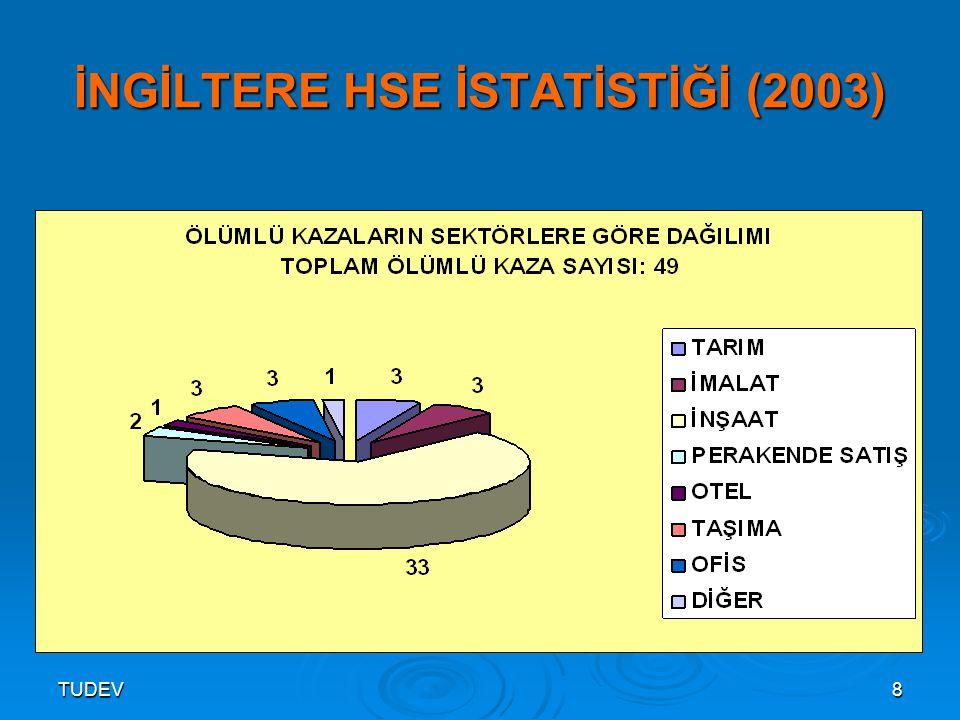 TUDEV9 İNGİLTERE HSE İSTATİSTİĞİ (2003)
