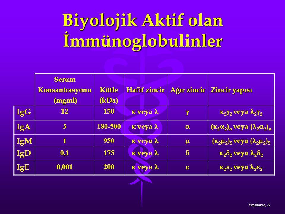 Biyolojik Aktif olan İmmünoglobulinler SerumKonsantrasyonu (mgml) (mgml)Kütle(kDa) Hafif zincir Ağır zincir Zincir yapısı IgG 12150  veya  2  2 ve
