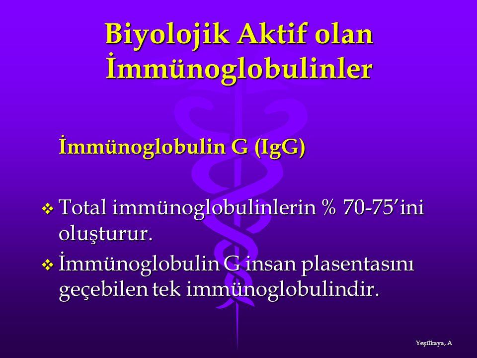 Biyolojik Aktif olan İmmünoglobulinler İmmünoglobulin G (IgG)  Total immünoglobulinlerin % 70-75'ini oluşturur.  İmmünoglobulin G insan plasentasını