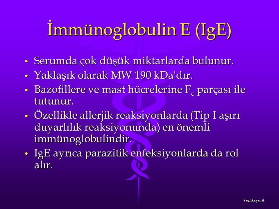 İmmünoglobulin E (IgE) Serumda çok düşük miktarlarda bulunur. Serumda çok düşük miktarlarda bulunur. Yaklaşık olarak MW 190 kDa'dır. Yaklaşık olarak M