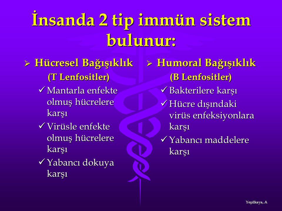 İnsanda 2 tip immün sistem bulunur:  Hücresel Bağışıklık (T Lenfositler) (T Lenfositler) Mantarla enfekte olmuş hücrelere karşı Mantarla enfekte olmu