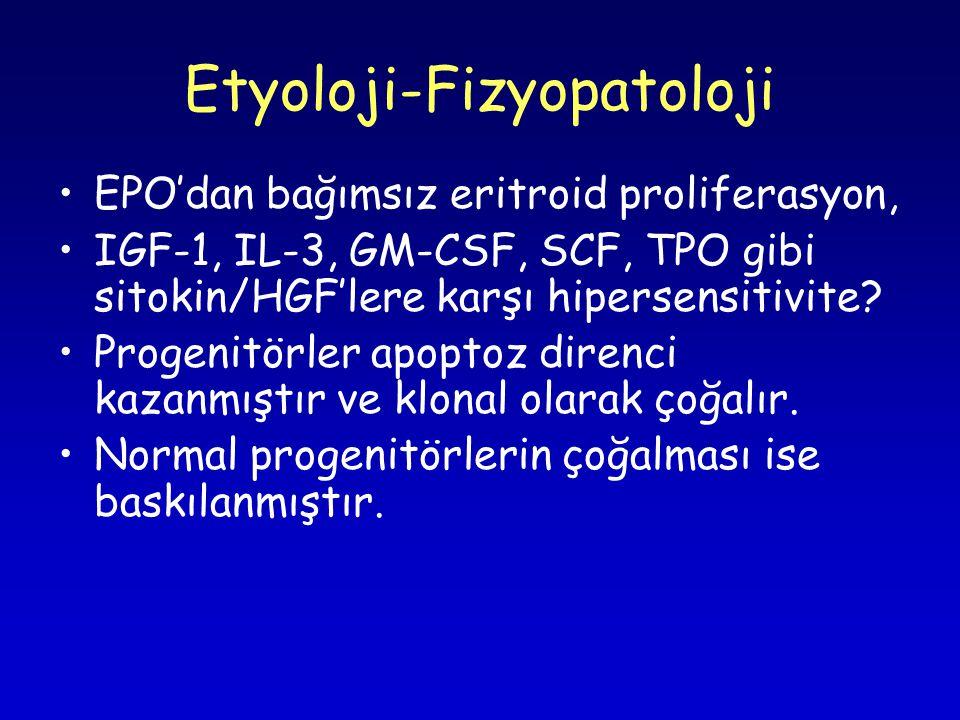 Etyoloji-Fizyopatoloji EPO'dan bağımsız eritroid proliferasyon, IGF-1, IL-3, GM-CSF, SCF, TPO gibi sitokin/HGF'lere karşı hipersensitivite.