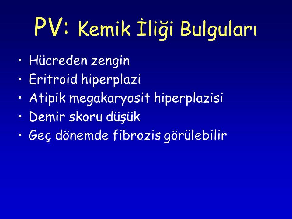 PV: Kemik İliği Bulguları Hücreden zengin Eritroid hiperplazi Atipik megakaryosit hiperplazisi Demir skoru düşük Geç dönemde fibrozis görülebilir