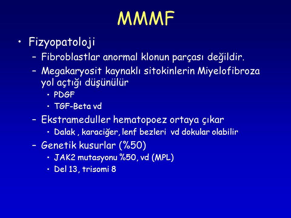 MMMF Fizyopatoloji –Fibroblastlar anormal klonun parçası değildir.
