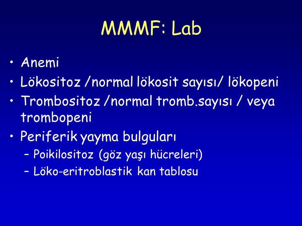 MMMF: Lab Anemi Lökositoz /normal lökosit sayısı/ lökopeni Trombositoz /normal tromb.sayısı / veya trombopeni Periferik yayma bulguları –Poikilositoz (göz yaşı hücreleri) –Löko-eritroblastik kan tablosu