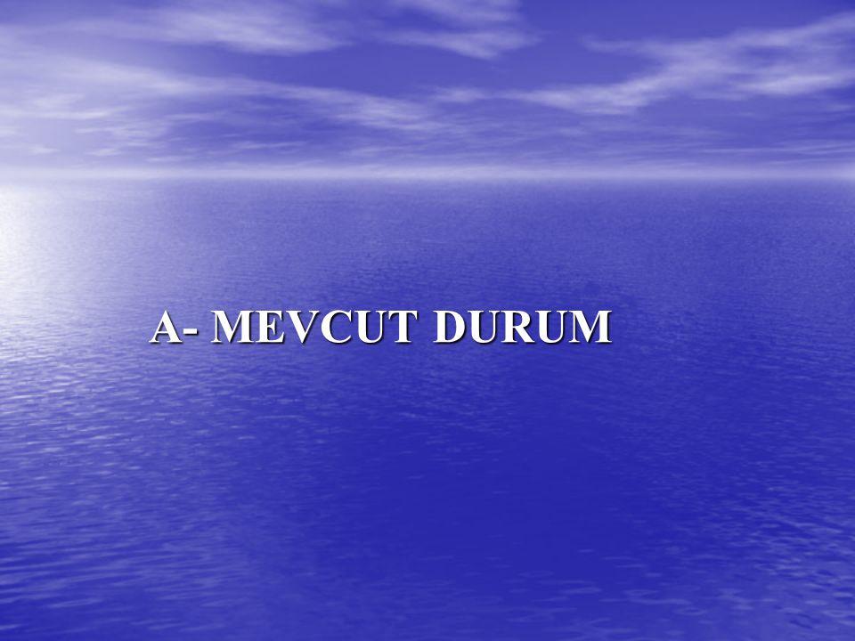 A- MEVCUT DURUM A- MEVCUT DURUM