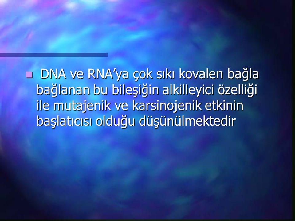 DNA ve RNA'ya çok sıkı kovalen bağla bağlanan bu bileşiğin alkilleyici özelliği ile mutajenik ve karsinojenik etkinin başlatıcısı olduğu düşünülmekted