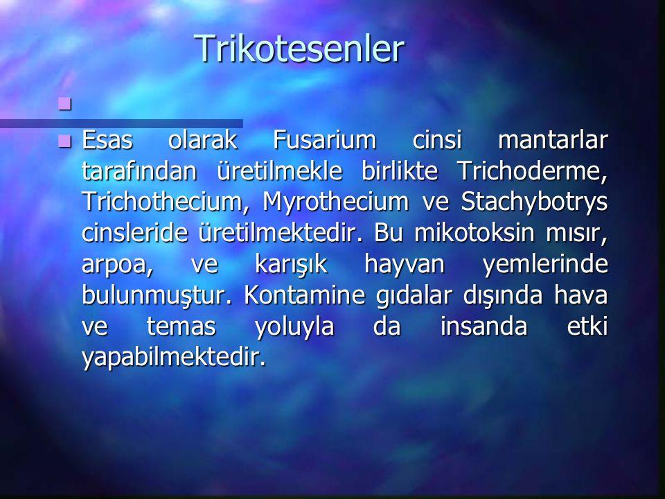 Trikotesenler Esas olarak Fusarium cinsi mantarlar tarafından üretilmekle birlikte Trichoderme, Trichothecium, Myrothecium ve Stachybotrys cinsleride