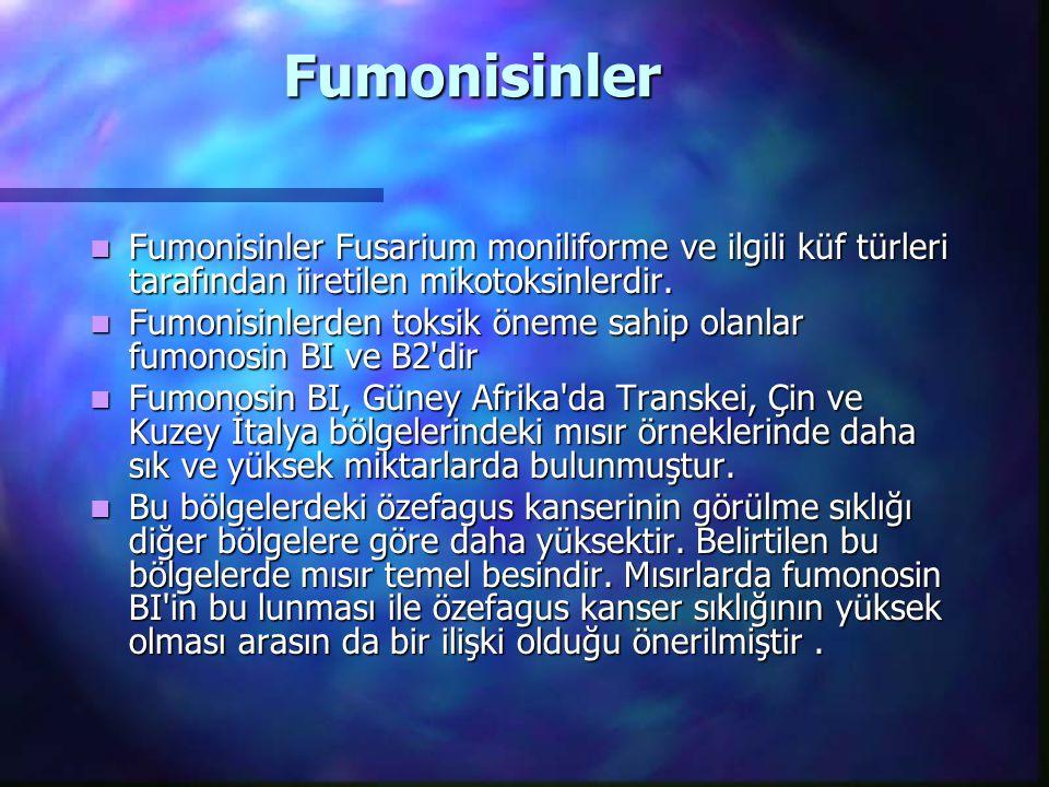 Fumonisinler Fumonisinler Fusarium moniliforme ve ilgili küf türleri tarafından iiretilen mikotoksinlerdir. Fumonisinler Fusarium moniliforme ve ilgil