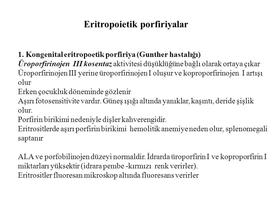 Eritropoietik porfiriyalar 1. Kongenital eritropoetik porfiriya (Gunther hastalığı) Üroporfirinojen III kosentaz aktivitesi düşüklüğüne bağlı olarak o