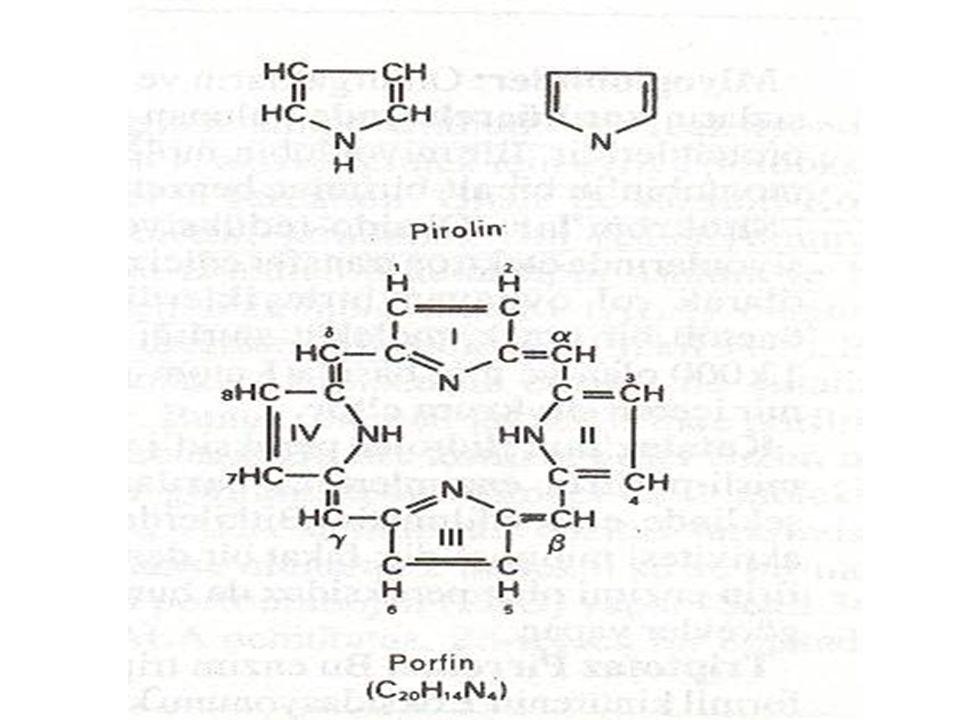 Tip I porfirinlerde yan zincirler simetrik olarak dizilir Tip III porfirinlerde yan zincirler D halkasında asimetrik olarak dizilir, insanlarda sadece tip III porfirinler fizyolojik olarak önemlidir.