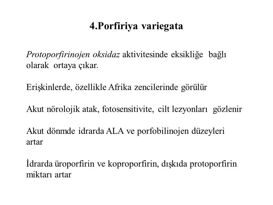 4.Porfiriya variegata Protoporfirinojen oksidaz aktivitesinde eksikliğe bağlı olarak ortaya çıkar. Erişkinlerde, özellikle Afrika zencilerinde görülür