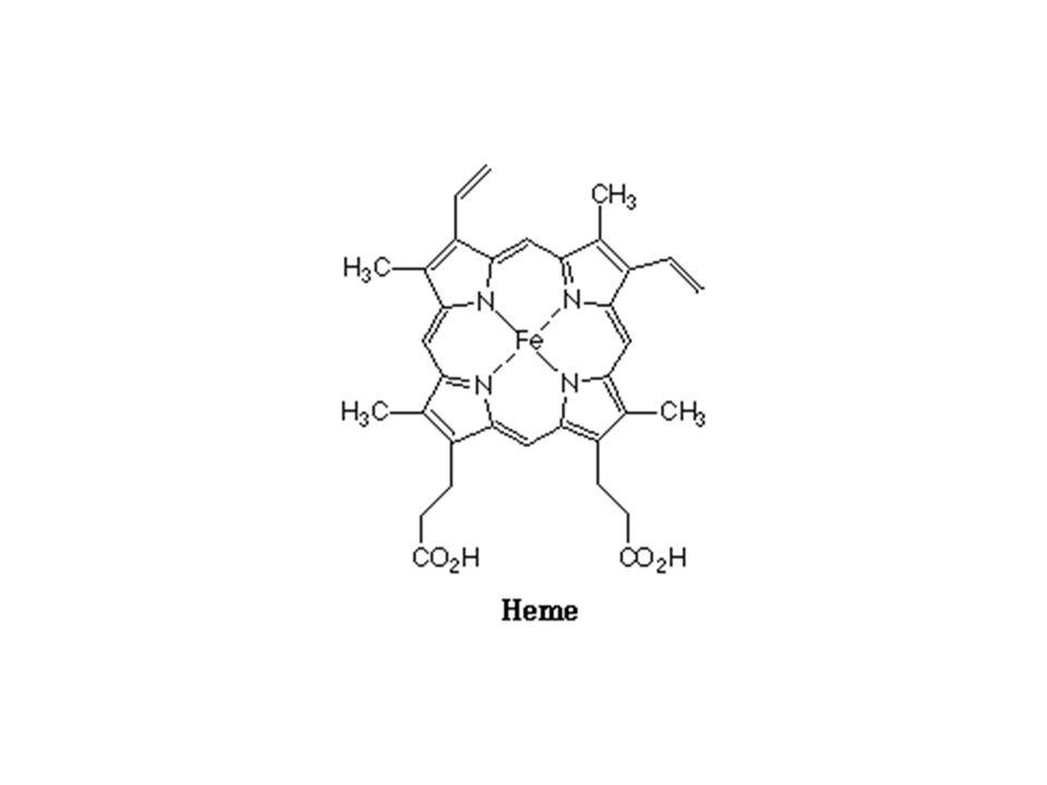 Hem,eritrositlerde bulunan ve kana kırmızı rengini veren hemoglobinin yapısında bulunur ve oksijen molekülü hem yapısındaki Fe 2+ 'ye bağlanarak taşınır Hem biyosentezi temel olarak karaciğer, kemik iliği ve dalakta gerçekleşir.