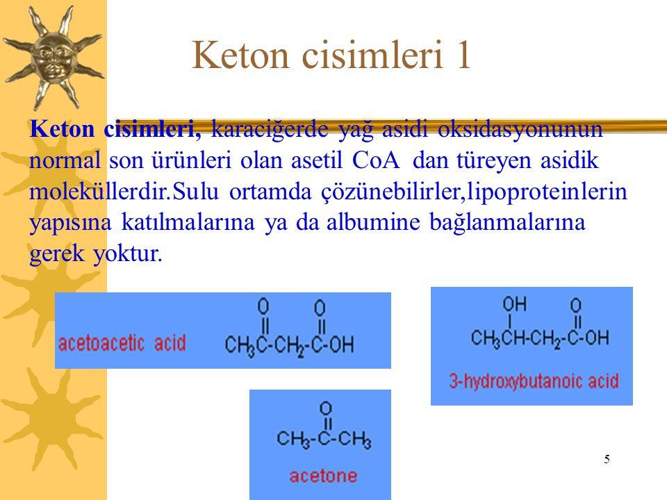 5 Keton cisimleri 1 Keton cisimleri, karaciğerde yağ asidi oksidasyonunun normal son ürünleri olan asetil CoA dan türeyen asidik moleküllerdir.Sulu or