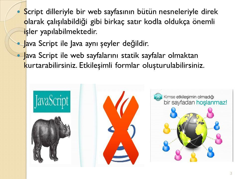 Script dilleriyle bir web sayfasının bütün nesneleriyle direk olarak çalışılabildi ğ i gibi birkaç satır kodla oldukça önemli işler yapılabilmektedir.
