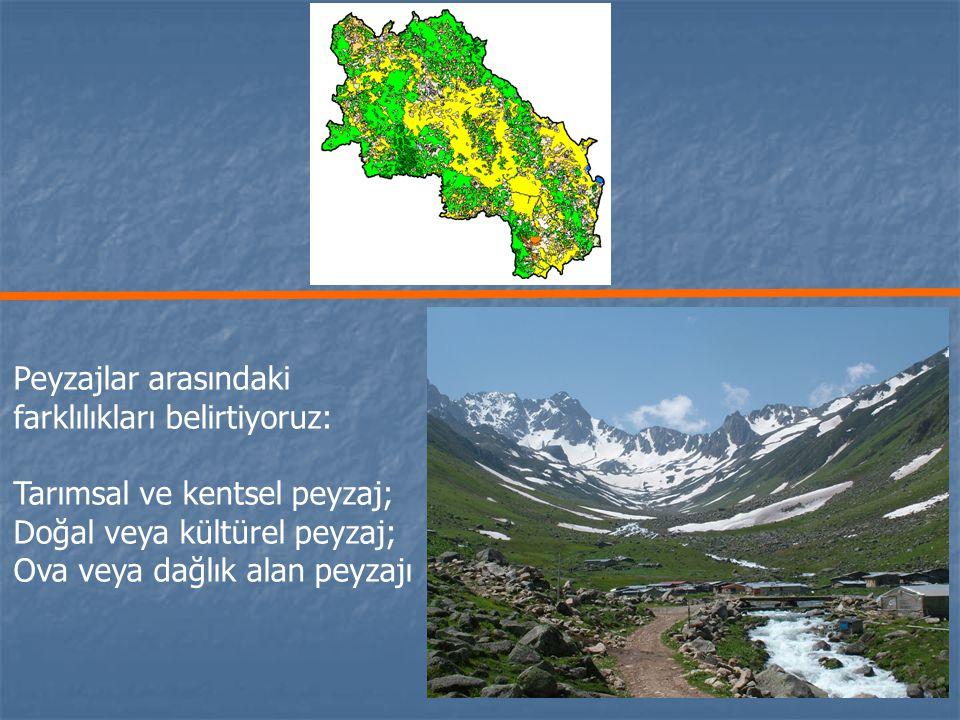 Her birimiz bu peyzajların bileşenlerini listeleyebilir: Çiftlikler, Tarım arazileri, Ormanlar, Islak alanlar, vd..