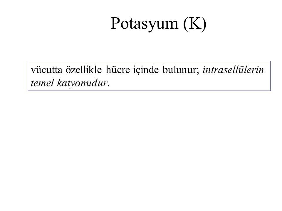 Potasyum (K) vücutta özellikle hücre içinde bulunur; intrasellülerin temel katyonudur.
