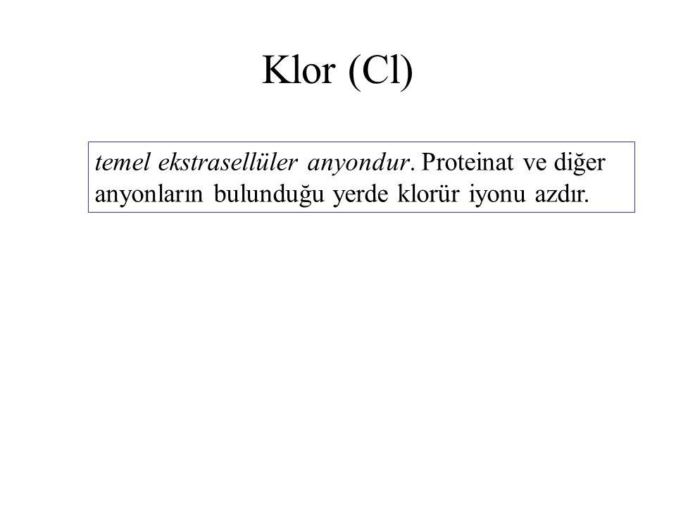 Klor (Cl) temel ekstrasellüler anyondur. Proteinat ve diğer anyonların bulunduğu yerde klorür iyonu azdır.