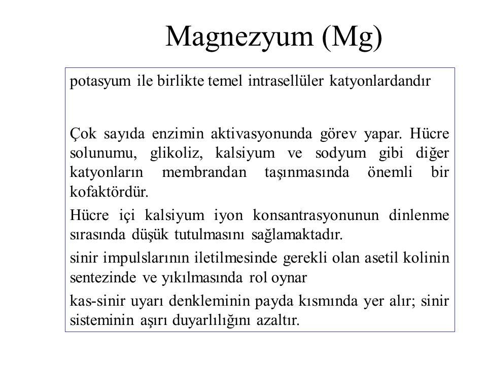 Magnezyum (Mg) potasyum ile birlikte temel intrasellüler katyonlardandır Çok sayıda enzimin aktivasyonunda görev yapar. Hücre solunumu, glikoliz, kals