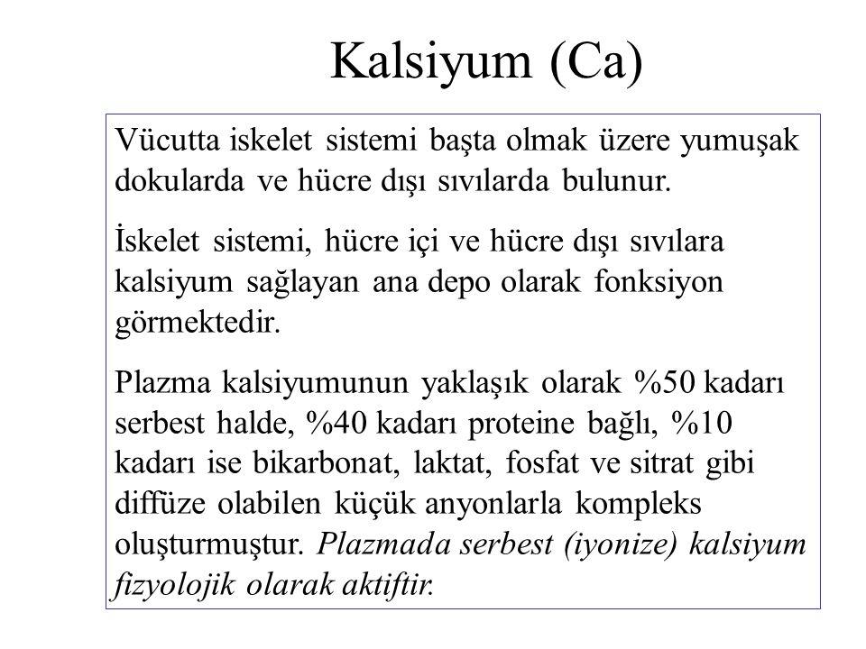 Kalsiyum (Ca) Vücutta iskelet sistemi başta olmak üzere yumuşak dokularda ve hücre dışı sıvılarda bulunur. İskelet sistemi, hücre içi ve hücre dışı sı