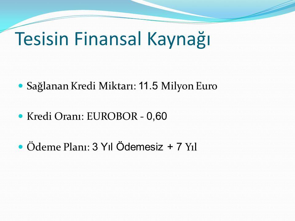 Tesisin Finansal Kaynağı Sağlanan Kredi Miktarı: 11.5 Milyon Euro Kredi Oranı: EUROBOR - 0,60 Ödeme Planı: 3 Yıl Ödemesiz + 7 Yıl
