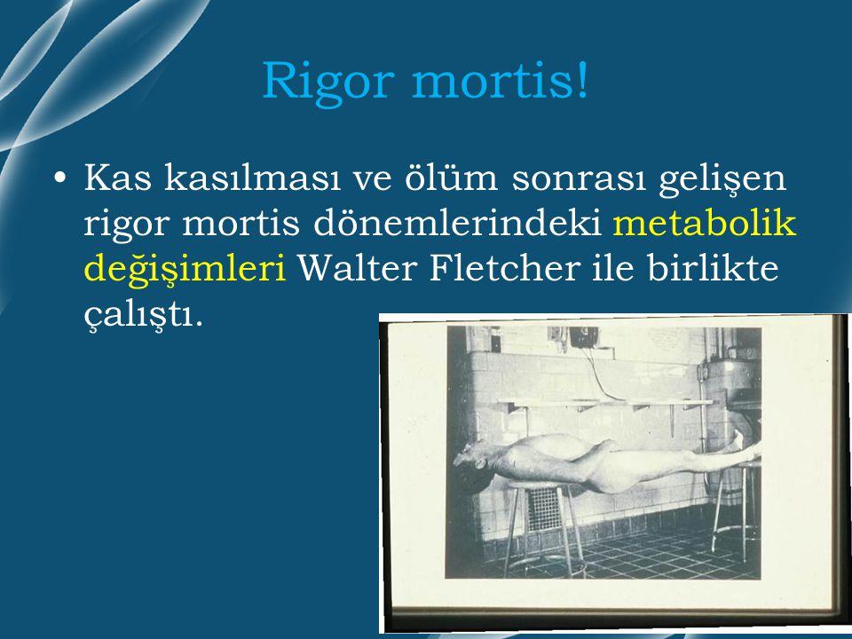 Rigor mortis! Kas kasılması ve ölüm sonrası gelişen rigor mortis dönemlerindeki metabolik değişimleri Walter Fletcher ile birlikte çalıştı.