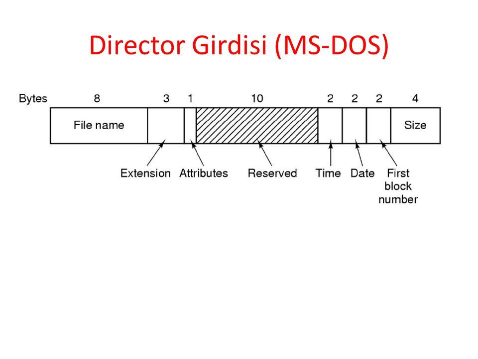 Director Girdisi (MS-DOS)