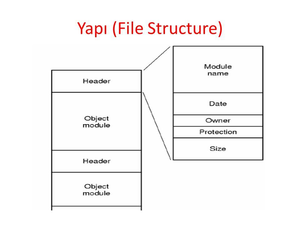 Yapı (File Structure)