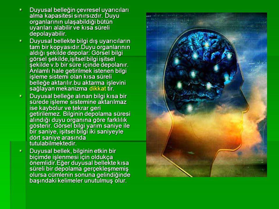  Duyusal belleğin çevresel uyarıcıları alma kapasitesi sınırsızdır. Duyu organlarının ulaşabildiği bütün uyarıları alabilir ve kısa süreli depolayabi