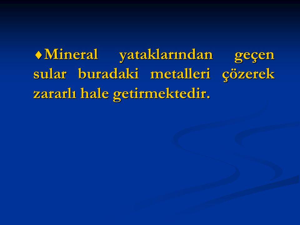  Mineral yataklarından geçen sular buradaki metalleri çözerek zararlı hale getirmektedir.