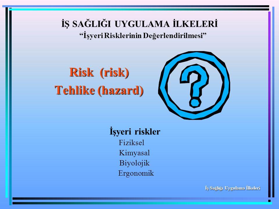 """Risk (risk) Tehlike (hazard) İŞ SAĞLIĞI UYGULAMA İLKELERİ """"İşyeri Risklerinin Değerlendirilmesi"""" İş Sağlığı Uygulama İlkeleri İşyeri riskler Fiziksel"""