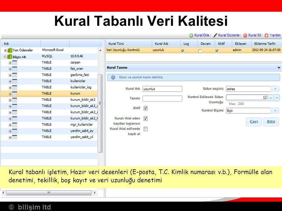© bilişim ltd Kural Tabanlı Veri Kalitesi Kural tabanlı işletim, Hazır veri desenleri (E-posta, T.C. Kimlik numarası v.b.), Formülle alan denetimi, te