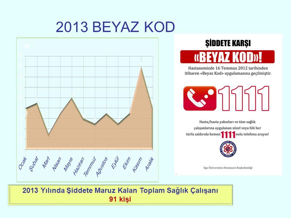 2013 BEYAZ KOD 2013 Yılında Şiddete Maruz Kalan Toplam Sağlık Çalışanı 91 kişi